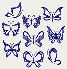 Various butterflies. Doodle style