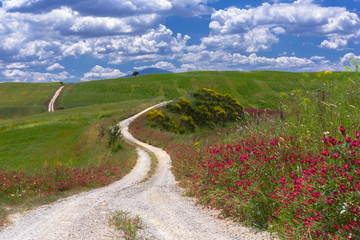 Val d'Orcia, white road