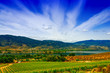 Vineyard by the lake - 67312351
