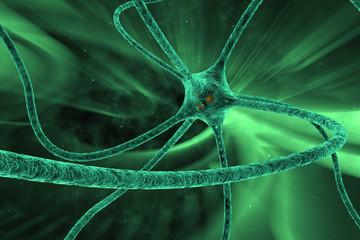 digital illustration neuron