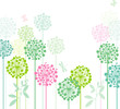 Colorful dandelions