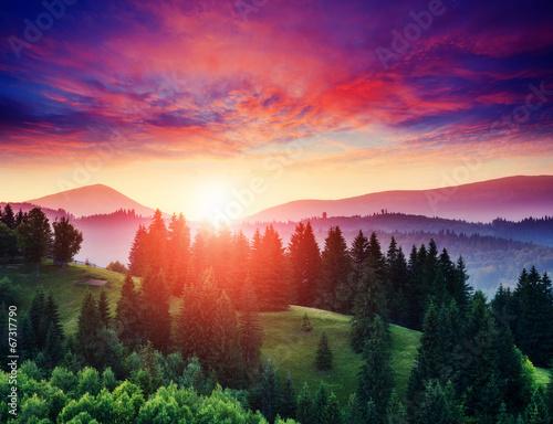 sunny mountain landscape - 67317790