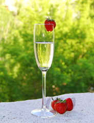 Champagne and strawberry