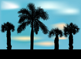 four palm tree silhouettes on blue sky background