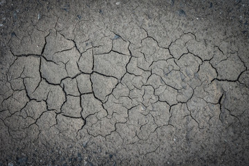 Cracked soil in drought area