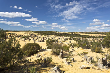 View of the Pinnacles Desert