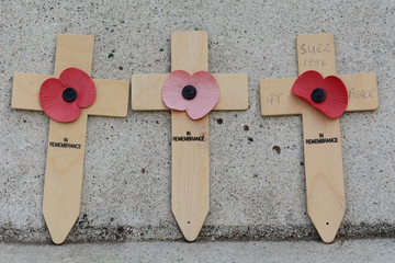 Suez Canal crisis remembrance crosses with poppies