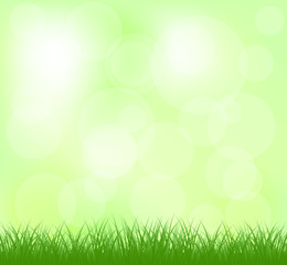 Natural light green grass background