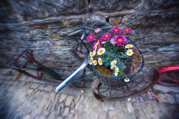 antique bike with flowers