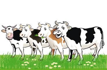 vier fröhliche Kühe