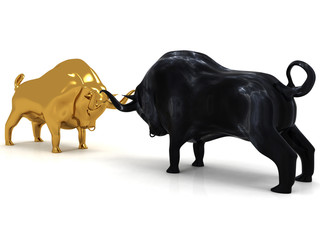3d Bulls