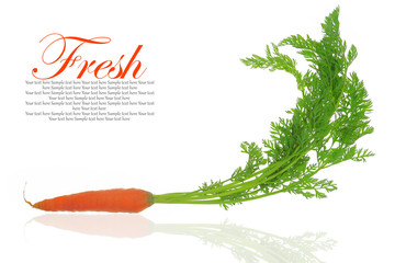 Fresh carrot with leaves isolated on white background