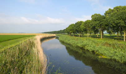 Canal through a rural landscape in summer