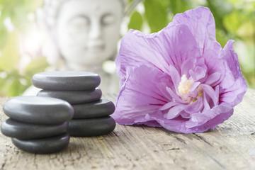 Massagesteine mit Blüte und Buddha
