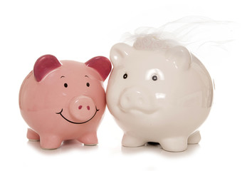 saving for a wedding piggybanks