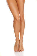 bare female legs on white background