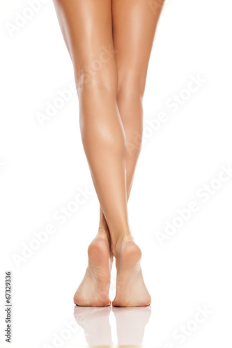beautiful women's feet and legs on white background - 67329336