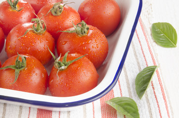 freshly washed tomatoes in an enamel bowl