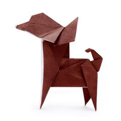 Chihuahua origami dog