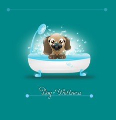 Dog Wellness
