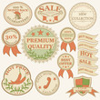 Vintage labels and ribbon retro style set. Vector illustraton