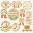Vintage labels and ribbon retro style set. Vector illustraton