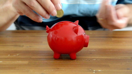 saving mony in red money pig