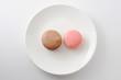 お皿にのせた マカロン フランスのお菓子 白背景