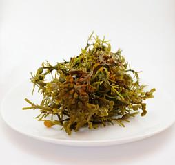 algues à manger