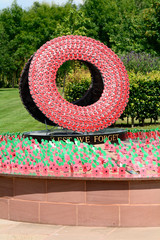 Poppy memorial – lest we forget