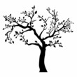 Tree silhouette with leaves on white background. - 67339552