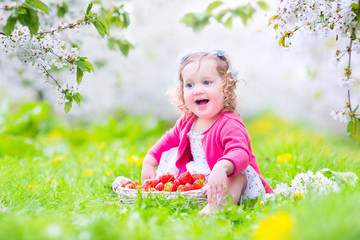 Little toddler girl eating strawberry in blooming applr garden