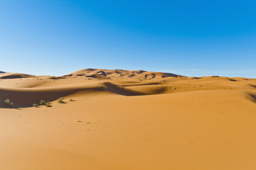 Dunes of Erg Chebbi at Morocco