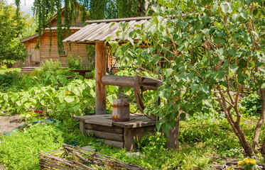 Rural landscape with garden and authentic well