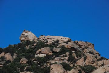 Rocher en forme de Lion à Roccapina - Corse