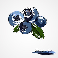 blueberries, huckleberries