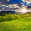 green grass on hillside meadow in mountain at sunset