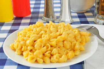 Shell macaroni and cheese