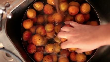 Washing Apricots