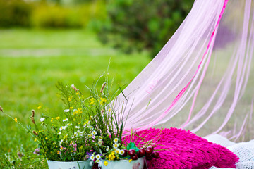 Summer picnic on the lawn with a pink canopy bed