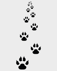 Black footprints of dogs, straight ahead -vector illustration