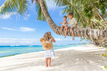 happy children - boy and girls - sitting on palm tree, tropical