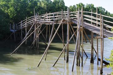 mangrove forest, wooden bridge