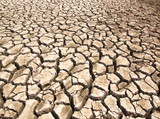 Drought breaks ground fissures poster