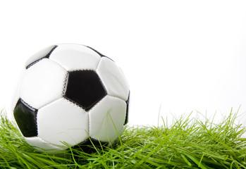 soccer ball on the green field.  ball on the grass