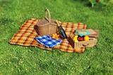 Summer Vacation Picnic Scene