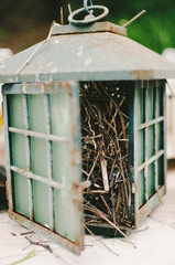 Bird Nest Inside Glass Lantern