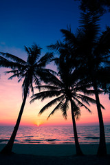 beach in sunset time.  palm trees silhouette on sunset tropical