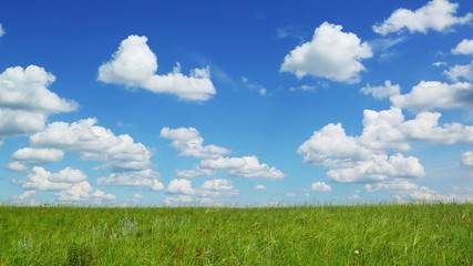background with green meadow under blue sky with clouds