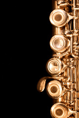 Detail of gold flutes on black background